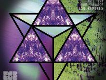 Fata Kiefer – LSD (Remixes)