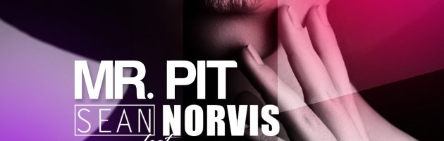 Mr. Pit & Sean Norvis feat. Justine Berg – Afraid to feel Remixes