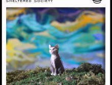 DJ Jace – Sheltered Society