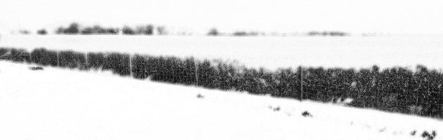 Bias, Atypikal, Side Liner – Koslif, Vol. 1